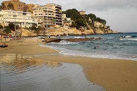 Cierran la playa de Cala Major como precaución por la picadura de una carabela el pasado jueves