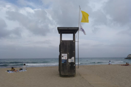 Siguen llegando carabelas portuguesas a las playas pitiusas