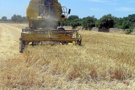 La construcción de chalés quedará prohibida en zonas de reserva agraria