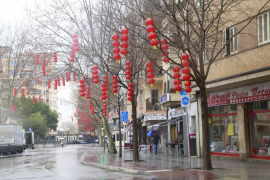 Noguera: «En Palma viven 50.000 comunitarios y 42.000 de otros países»