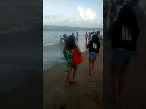 Muere un joven después de que un tiburón le amputase el pene