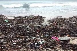 Los hoteleros mallorquines se muestran preocupados por falta de limpieza en algunas playas