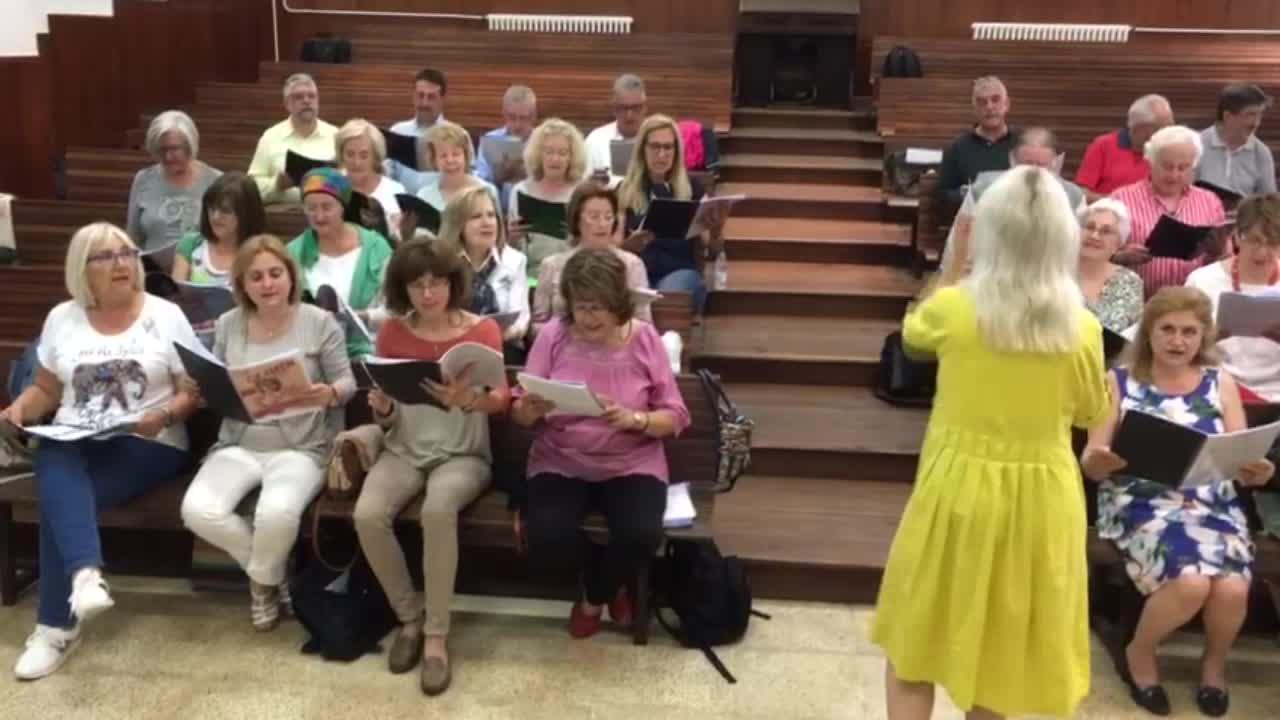 El Orfeó Ramon Llull cantará 'Carmen' en Francia junto a mil voces