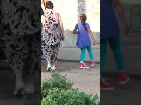 Estupor en la red por una abuela que llevó a sus nietos en un transportín para perros