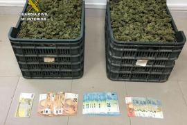 La Guardia Civil incauta 4 kilos de marihuana a un conductor en Campos