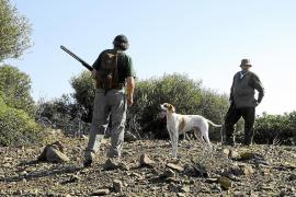 Mallorca se adelanta a Europa y rebaja la caza de tórtolas para garantizar la especie