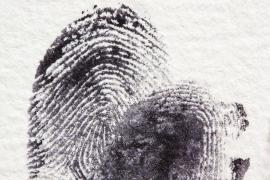 El ADN permite resolver el asesinato de una niña hace 30 años en Francia