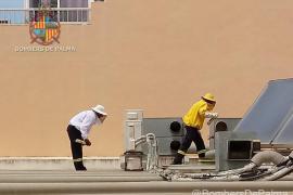 Los bomberos retiran 10 panales de avispas en el Espai Comunitari Litoral de Llevant