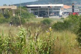 Alarma en Manacor por un incendio agrícola al lado de una gasolinera