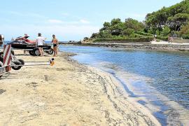 Muere un bañista extranjero de 72 años en la playa des Riu de Santa Eulària