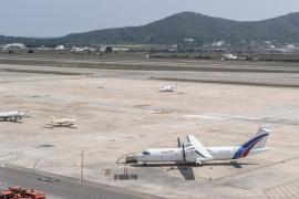Una docena de vuelos afectados por la presencia de un pitbull suelto en las pistas de Ibiza