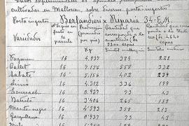 La Estació Enològica de Felanitx recupera documentos de hace un siglo