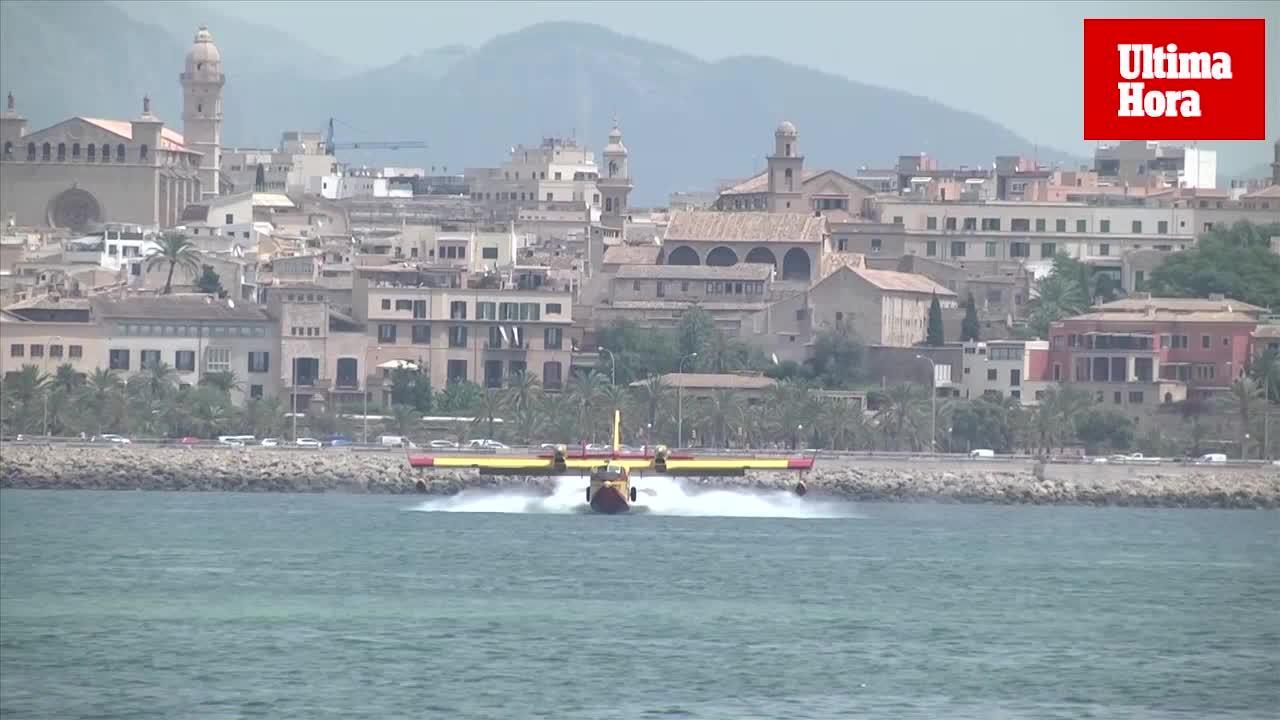 Simulacro de amerizaje de aviones anfibios en el puerto de Palma