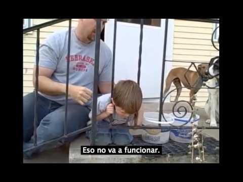 ¿Cómo actuar cuando a un niño se le queda la cabeza atrapada entre dos barrotes?