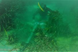 Fondeo sobre una pradera de posidonia en la bahía de Portocolom