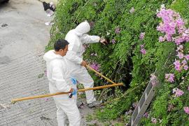 La Guardia Civil peina el Port d'Andratx en busca del arma del crimen de Nuria Orol