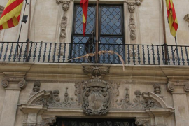 Apoyo absoluto por parte del Ayuntamiento de Palma contra el maltrato animal