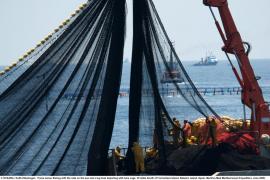 MAPA fija una cuota de 260 kilos de captura individual de atún rojo para los buques del Mediterráneo