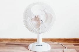CCOO denuncia que personal de Cort trabaja a 31 grados