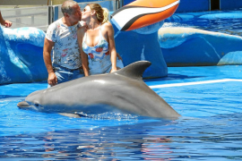Gustavo González y María Lapiedra un amor entre delfines