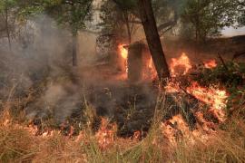 El mortal incendio del norte de California causa 6 muertos y se mantiene sin control