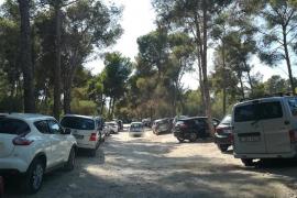 """Así protege Calvià sus zonas verdes de """"especial protección"""""""