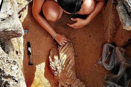 Hallan en la necrópolis de Son Real restos humanos de más de 2.500 años de antigüedad