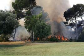 Incendio en Costa de los Pinos.