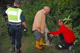 La Policía Local de Andratx descubre en un pozo una 'fosa común' canina