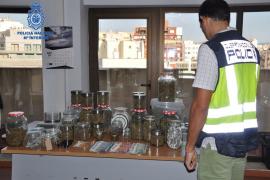 La asociación de cannabis del Port de Pollença era una tapadera para vender droga