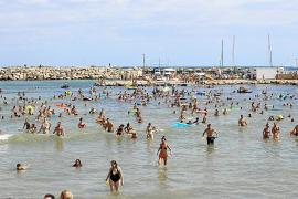 El alcalde de Santa Margalida insiste en recuperar los patos vivos en la suelta de Can Picafort