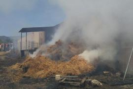 Incendio en el club hípico Es Raiguer de Inca