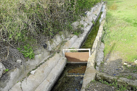 El Consistorio pondrá vigilancia en la zona de la fuente de s'Avall de l'Anou