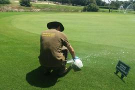 Cerca de un millón de euros en multas a tres campos de golf de Mallorca por el uso de agua subterránea