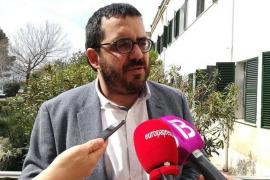 Ya son más de 700 los positivos confirmados de 'Xylella fastidiosa' en Baleares