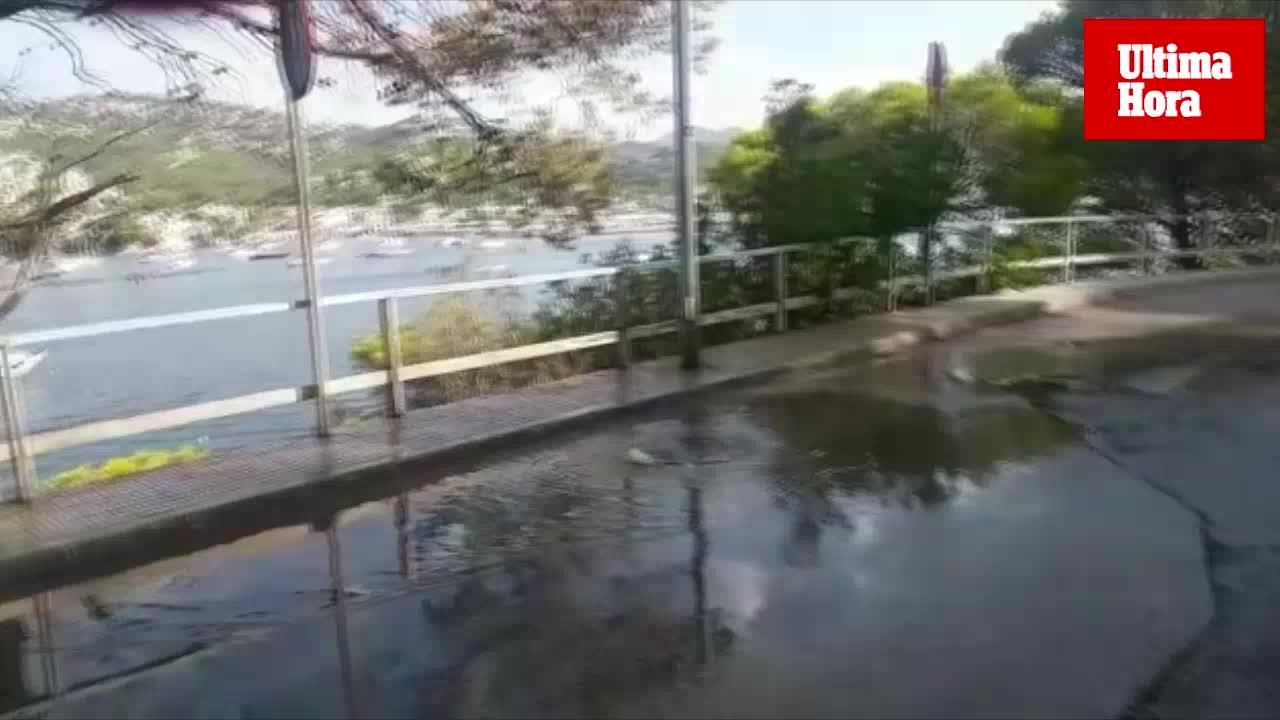 Una fuga de aguas residuales causa graves molestias en el Puerto de Andratx