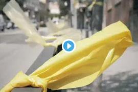 Ciudadanos pedirá amparo al Defensor del Pueblo para los «indefensos» que retiran lazos amarillos