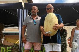Récord del melón más grande: 22,550 kilos