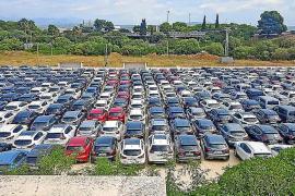 Unos 400 coches de alquiler ocupan un solar de Can Pastilla