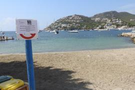 La playa del Brismar del Puerto de Andratx sigue cerrada días después del vertido