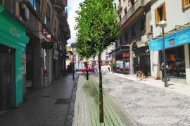 La calle Velázquez se peatonalizará a comienzos del próximo año