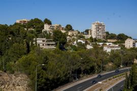 El Consell acuerda arreglar parte del arbolado del barrio de la Bonanova