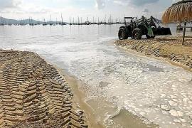 Una «riada» ocasionada por la lluvia obliga a cerrar la playa de Albercuix, en el Port de Pollença
