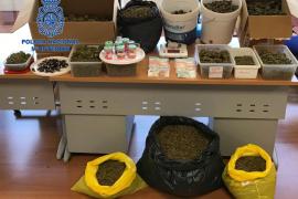 Más de 14.500 gramos de marihuana incautados en una asociación de cannabis