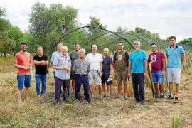 La recuperación de antiguos cereales amplía el patrimonio genético de la Isla
