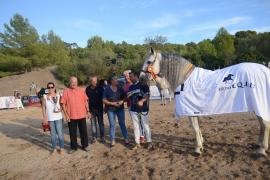 Decenas de caballos participan en el campeonato 'Sol de Tramuntana'