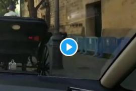 Multa al conductor de una calesa en Palma por llevar a más personas de las permitidas