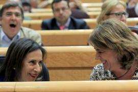 Gritos de dimisión del PP en el Senado en la intervención de la ministra Delgado