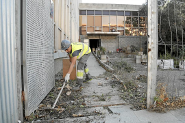 El Col·legi Oficial d'Arquitectes pide a Cort que estudie la propuesta de Endesa
