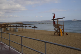 Cs Palma consigue la aprobación de una batería de medidas para acabar con los vertidos en la Bahía
